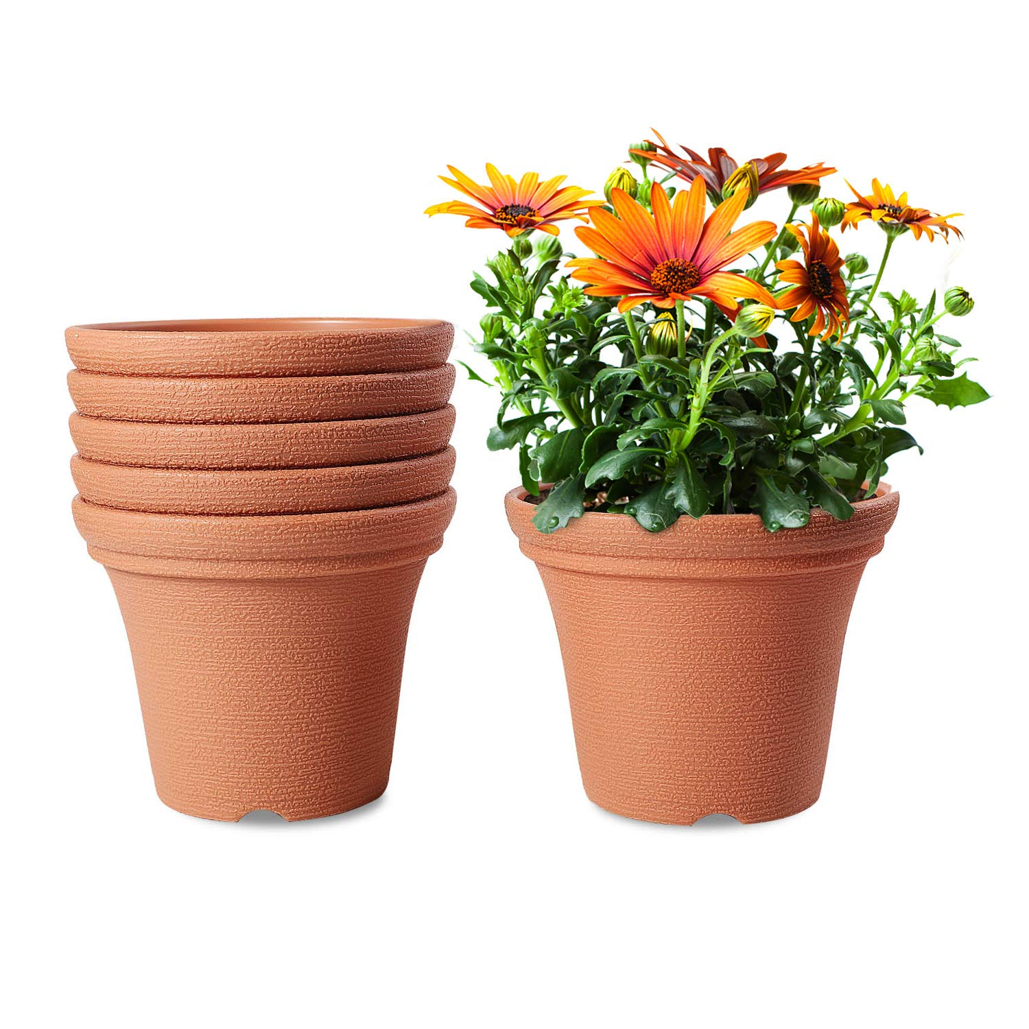 T4U Plastic Garden Flower Planter Pots with Faux Clay Finish 6 Inch Red Set of 6, Round Indoor Outdoor Plant Pots Containers for Herb, Orchid, Aloe Plants Home Garden Office Decoration