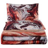 A Nice Night Closure-Printed Marble Retro Style Paintbrush Colors Watercolor Artwork Design,Ultra Soft Comforter Set (Colorful-Marble, Queen)