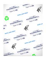 Hammermill Great White 50% Recycled 20lb Copy Paper, 8.5 x 11, 1 Ream, 500 Sheets, Made in USA, Sustainably Sourced From American Family Tree Farms, 92 Bright, Acid Free, Printer Paper, 086780R