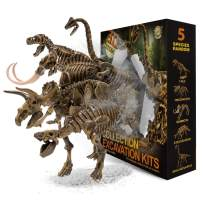 muscccm Dinosaur Toys Excavation Kits Excavate Five Different Dinosaur Real Fossils Great STEM Science Gift for Dinosaur and Archeology Enthusiasts of Any Age,Cool Toys for Kids
