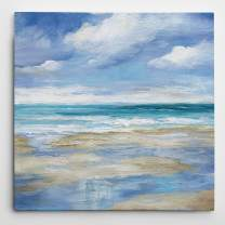 WEXFORD HOME Washy Coast I' Gallery Wrapped Canvas Wall Art, 32x32, Island Mist I