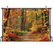 LYWYGG Autumn Scenery Deciduous Background 7x5ft Vinyl Deciduous Mountain Road Photography Backdrop Tree and Yellow Fall Leaves View Background Studio Props CP-67