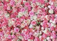 Dudaacvt 7x5ft Happy Birthday Day Backdrop Wedding Backdrops Pink Red Rose Flowers Photography Backdrop Studio Photographers Background Dessert Baby Shower Table Backdrop D040