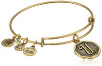 Alex and Ani Womens Initial U Charm Bangle