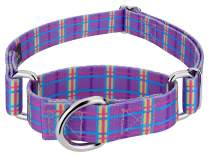 Country Brook Design - 5/8 Inch Grape Plaid Martingale Dog Collar - Small