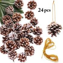 Christmas Pine Cones, JUSTDOLIFE 24 Pack Christmas Pinecone Wood Frosted White Ornaments with 5M String Strips Xmas Tree Ornaments for Home Party Holiday Decor