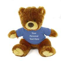 Plushland Honey Noah Teddy Bear 12 Inch, Stuffed Animal Personalized Gift - Custom Text on Shirt - Great Present for Mothers Day, Valentine Day, Graduation Day, Birthday (Powder Blue Shirt)