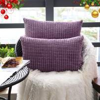 """Set of 2,Decorative Lumbar Throw Pillow Covers 12""""x20"""" (No Insert),Solid Cozy Corduroy Corn Accent Pillow Case Shams,Soft Rectangle Cushion Covers with Zipper for Couch/Sofa/Bed,Lavender Purple"""