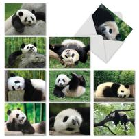The Best Card Company - 10 Blank Greeting Cards with Animals (4 x 5.12 Inch) - Assorted Pets, Wildlife Kid Cards - Pooped Pandas M6471OCB
