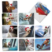 Doggie in the Window - 20 Adorable Dog Merry Christmas Cards with Envelopes (4 x 5.12 Inch) - Assortment of Funny Pet Animals - Boxed Holiday Note Cards (10 Designs, 2 Each) AM6481XSG-B2x10