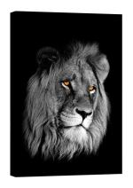 LightFairy Glow in The Dark Canvas Painting - Stretched and Framed Giclee Wall Art Print - Animals Nature Lion Head - Master Bedroom Living Room Decor - 6 Hours Glow - 32 x 46 inch