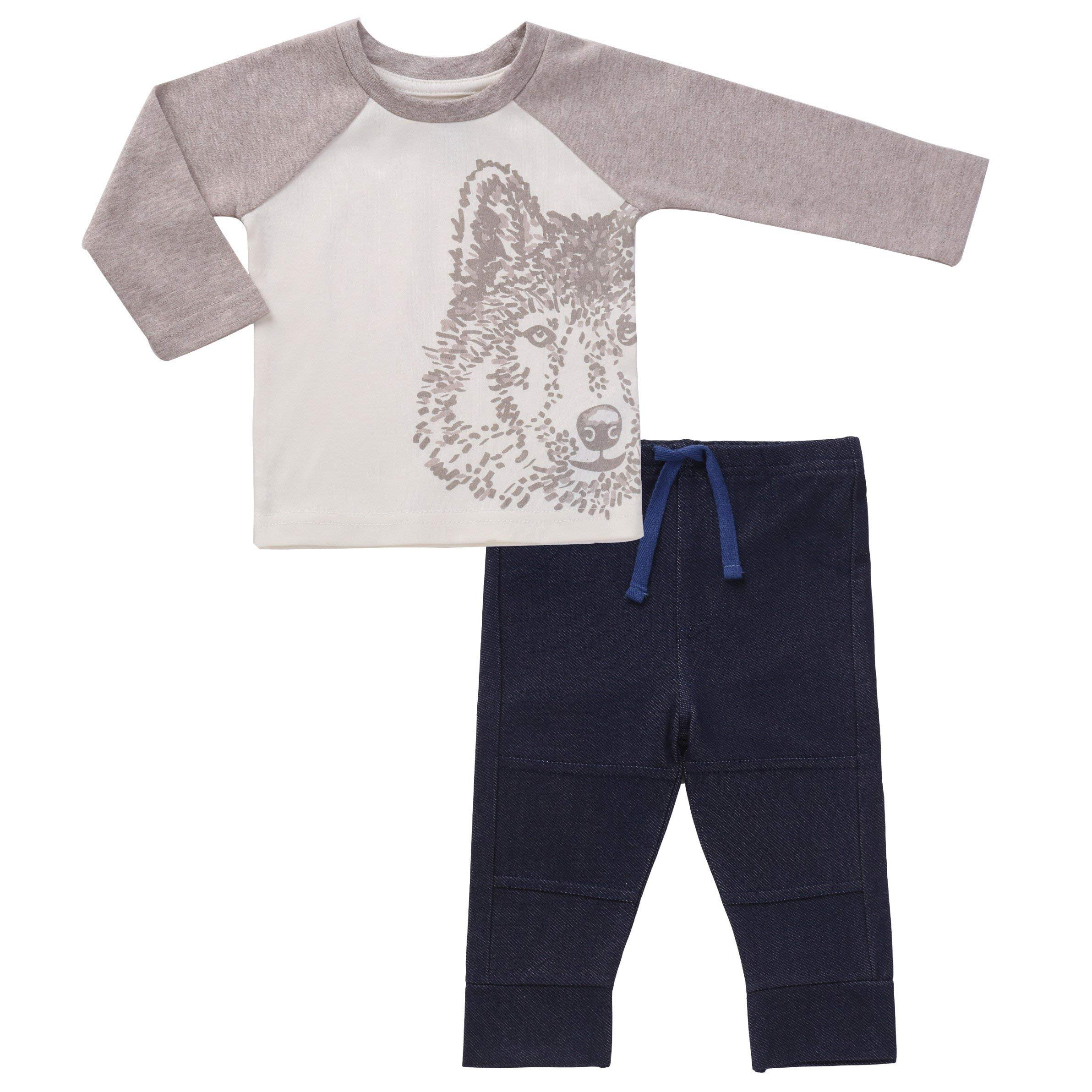 Baby Boys Long Sleeve Cotton Tee and Jogger Pant Set