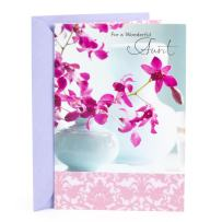 Hallmark Mother's Day Card for Aunt (Wonderful Woman)