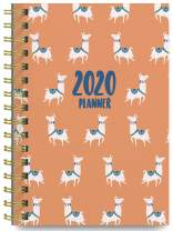 2020 Llamas Soft Cover Academic Year Day Planner Book by Bright Day, Weekly Monthly Dated Agenda Spiral Bound Organizer, 16 Month Calendar 6.25 x 8.25 Inch,