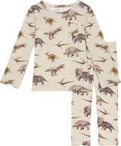 Posh Peanut Baby Pajamas Set - Toddler Sleepers Little Boy Clothes - Kids Two Piece PJ - Soft Viscose Bamboo