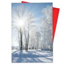 Christmas Sunrise - 12 Wilderness Merry Christmas Note Cards with Envelopes (4.63 x 6.75 Inch) - Nature Winter Wonderland, Happy Holidays Notecard Set - Boxed Xmas Greeting Card Set B6655FXSG