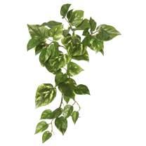 "Vickerman Floral Everyday Greenery, 18"", Green"