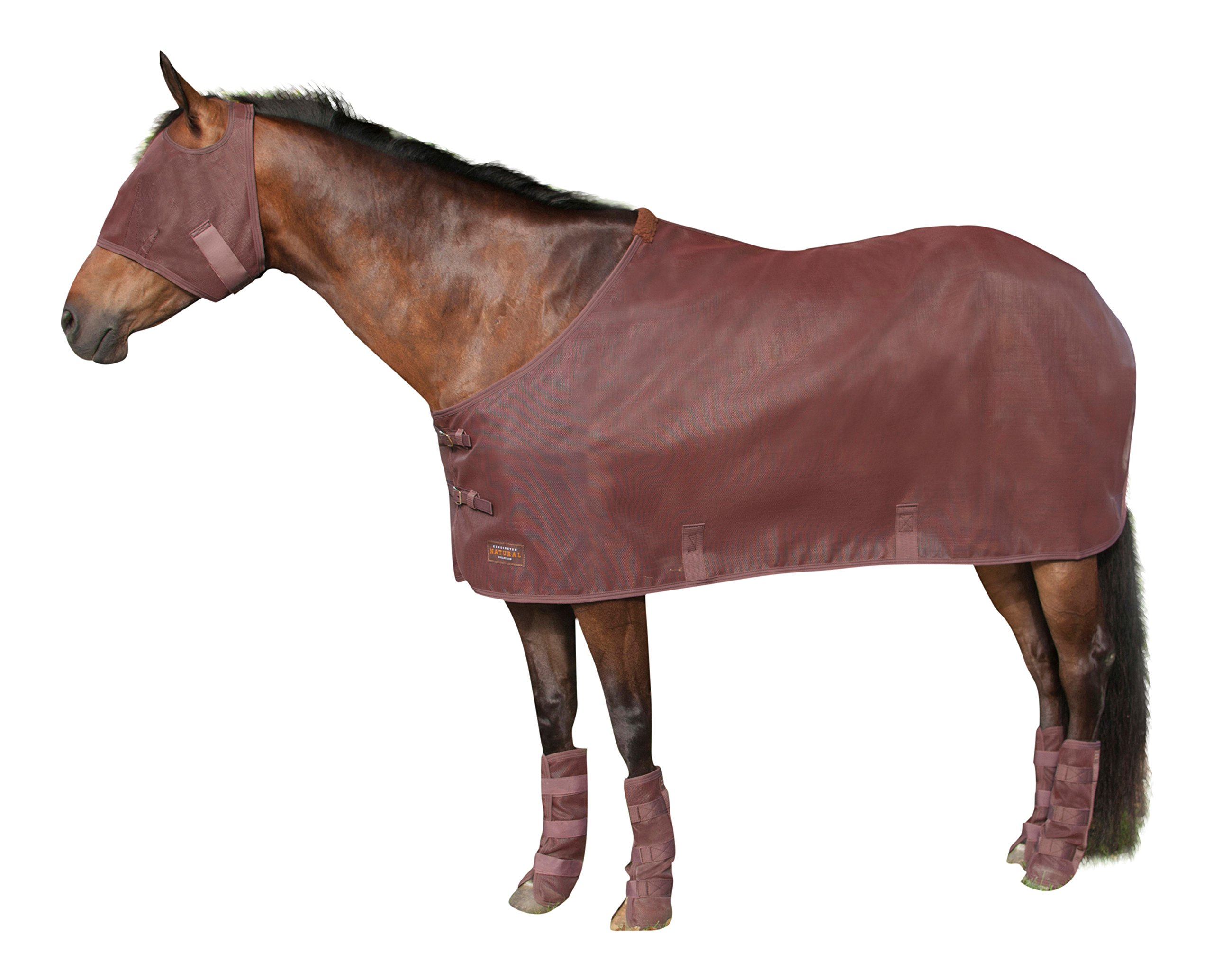 Kensington Natural Protective Fly Sheet for Horses — Traditional Cut Year Round Protective Sheet — Made of Grooming Mesh This Sheet Offers Maximum Protection for Your Horse, 82, Bay