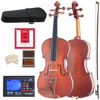 Cecilio CVA-400 Solidwood Viola with D'Addario Prelude Strings, Size 15.5-Inch