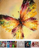 Packs 5D DIY Diamond Painting Paint by Numbers Kits for Adult ,Full Drill Diamond Embroidery Dotz Kit Home Wall Decor (Butterfly)