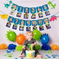 Faisichocalato Dinosaur 1st Birthday Monthly Photo Banner Baby Dino First Year Milestone Photo Banner for Roar Theme First Birthday Party Decorations Cake Smash Photo Props
