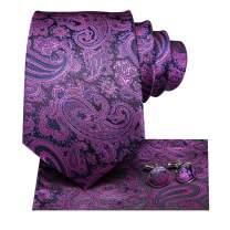 Hi-Tie Mens Necktie Paisely with Pocket Square Handkerchief Cufflinks Set