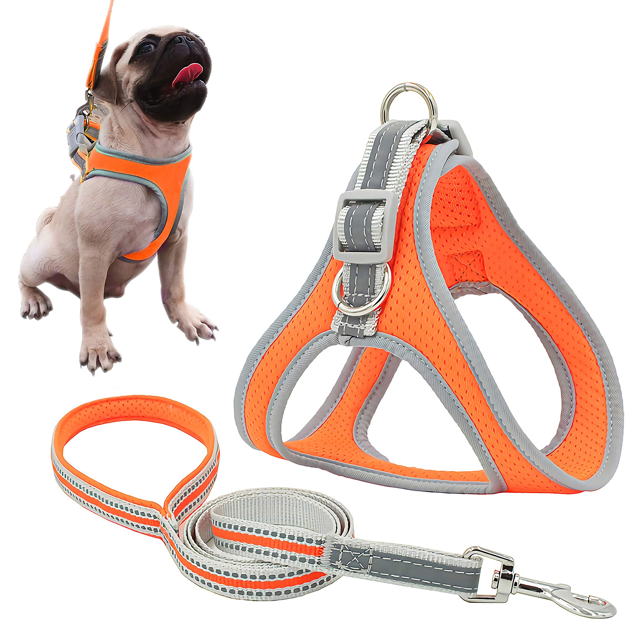 risdoada Reflective Breathable Air Mesh Dog Harness with Leash, Adjustable No Pull Puppy Vest, Soft Pet Chest Strap for Small Medium Large Dogs and Cats