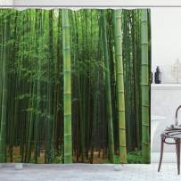 """Ambesonne Bamboo Shower Curtain, Picture of a Bamboo Forest Exotic Fresh Jungle Vision with Tall Shoots Tropic Art Print, Cloth Fabric Bathroom Decor Set with Hooks, 70"""" Long, Green"""