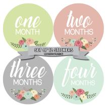 Months In Motion Baby Month Stickers - Monthly Milestone Sticker for Girl - Onesie Month Sticker - Infant Photo Prop for First Year - Shower Gift - Newborn Keepsakes - Baby Gift Registry - Floral