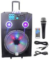 "NYC Acoustics N15BR 15"" 600w Rechargeable Powered Bluetooth Party Speaker w Mic"