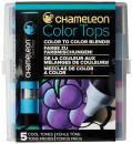 Chameleon Art Products, Cool Tones, Color Tops, Quick and Easy Blending - Set of 5