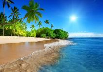 FHZON 10x7ft Tropical Beach Summer Sunshine Backdrop Beach Coast Tropical Paradise Blue Sea Sky Coconut Tree Photography Background Themed Party YouTube Backdrop Photo Booth Studio Props FH1200
