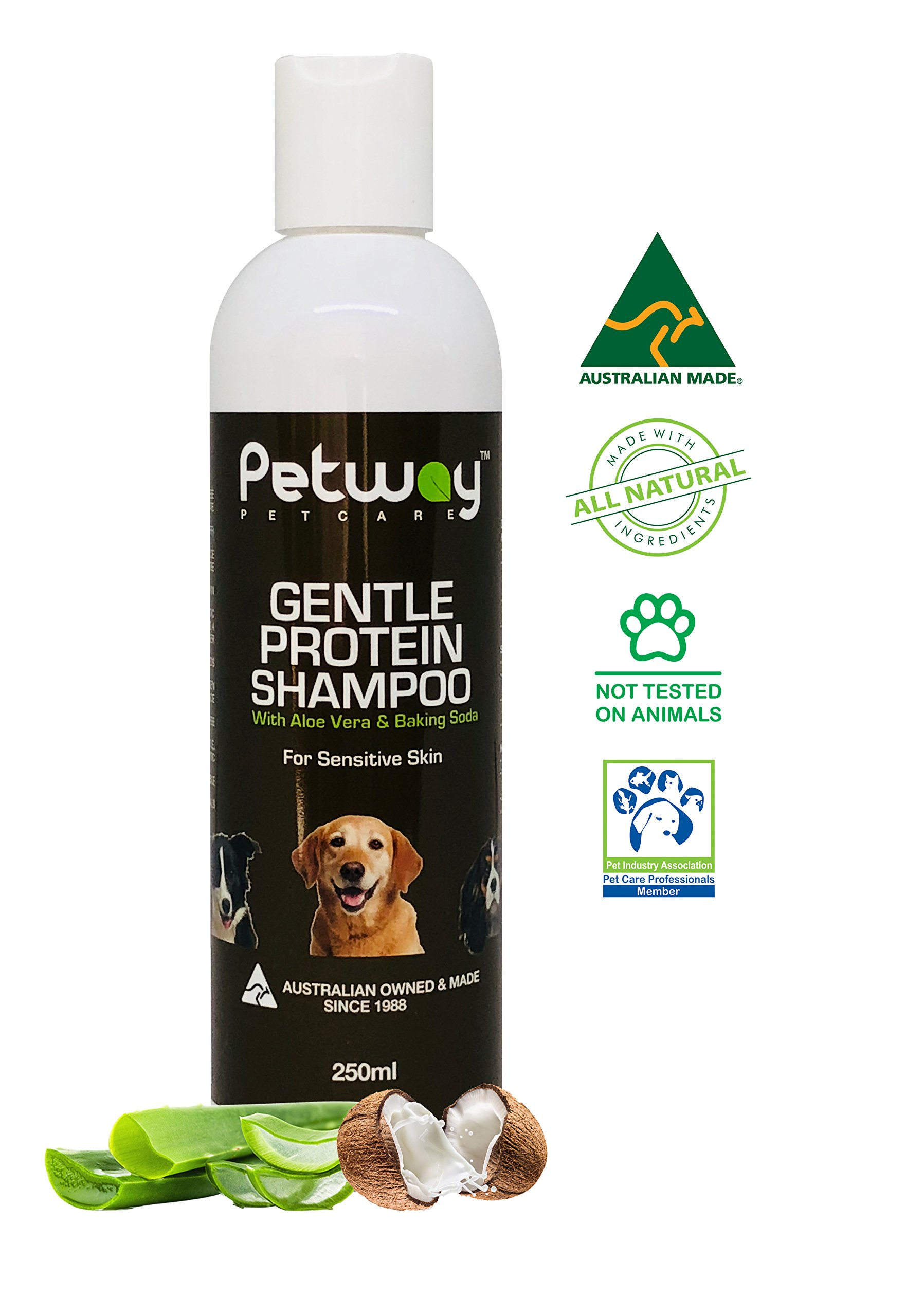 PETWAY - Dog Shampoo | Pet Protein Shampoo with Aloe Vera & Baking Soda, Coconut Fragrance, Pet Odor Eliminator Deodorizer, Best for Sensitive Skin, Removes Dandruff, Biodegradable - 250ml