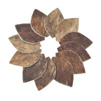 Leather Earrings Leaf Small Die Cut 12pk Hair-On Brindle Mix DIY