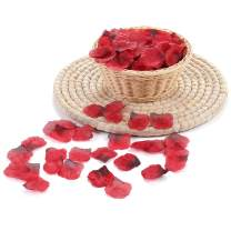 3000 PCS Dark Red Silk Rose Petals Artificial Flower Petals for Romantic Night Wedding Party Flower Decoration Valentine Day (Dark Red, 3000 pcs)