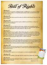 """Trends International Poster Mount United States of America Bill of Rights, 22.375"""" x 34"""", Poster & Mount Bundle"""