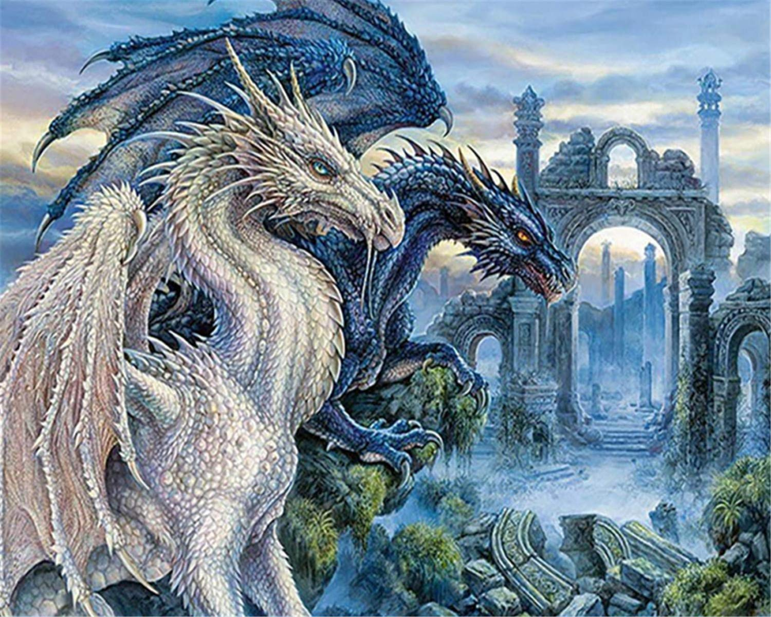 EOBROMD DIY 5D Diamond Painting by Number Kits, Crystal Rhinestone Embroidery Paint with Diamonds, Full Drill Canvas Art Picture for Home Wall Decor, Dragons 12x16