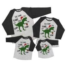 7 ate 9 Apparel Matching Family Christmas Shirts - Christmas Dinosaur Grey Shirt