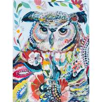 """SKRYUIE 5D Diamond Painting Colorful Owl Full Drill Paint with Diamond Art, DIY Oil Painting by Number Kits Cross Stitch Embroidery Rhinestone Wall Home Decor 30x40cm (12""""x16"""")"""