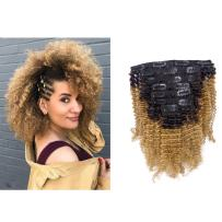 Anrosa Kinkys Curly Clip in Hair Extensions Human Hair 3C 4A Afro Kinky Curly Clip ins Natural Hair Real Remy Thick Human Hair Extensions for Black Women (20 inch, Ombre #1B/27)