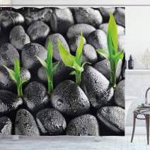 """Ambesonne Plant Shower Curtain, Basalt Stones with Bamboo Leaves Sticking Water Droplets Harmony of Nature, Cloth Fabric Bathroom Decor Set with Hooks, 75"""" Long, Dark Taupe"""