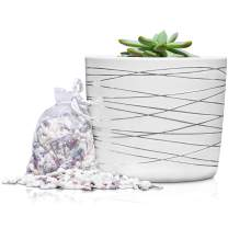 6 Inch Ceramic Plant Pot - Small White Planter with Silver Stripes - Perfect for Succulents Like Jade & Cactus - Decorative Pebbles Included - Cute Flower Pots Indoor or Outdoor Home Decor