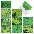 10 'High Notes' All Occasion Note Cards with Envelopes, Assorted Cannabis Greeting Cards, Blank Stationery for Thank You, Holidays, Birthdays and Graduation 4 x 5.12 inch M3059