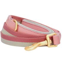 """Blueberry Pet 6 Colors Polyester Fabric Webbing and Soft Genuine Leather Dog Leash with Soft & Comfortable Handle, 6 ft x 3/4"""", Pink and Grey, Leashes for Dogs"""