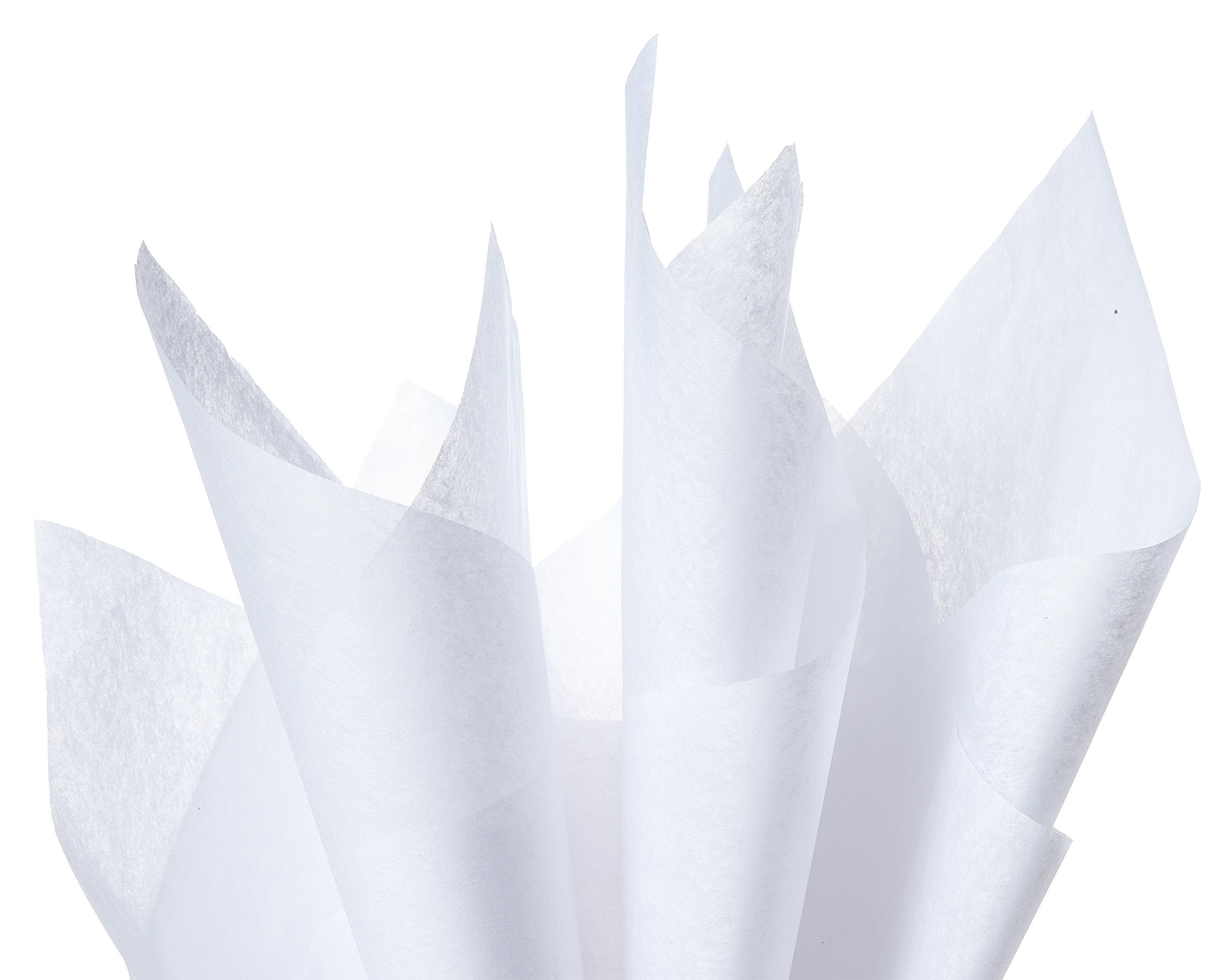 American Greetings Holiday Tissue Paper, White (100-Sheets)