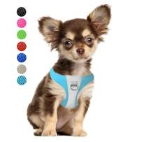 PetiFine Step-in Dog Harness, No Pull Puppy Vest Harness with Reflective Adjustable Breathable Air Mesh for X-Small/Small/Medium/Large Dogs & Cats(XS,Babyblue)
