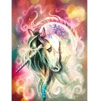 ANMUXI 5D Diamond Painting Kits Full Square Drills 60X80CM Fantasy Unicorn Abstract Art Paint with Diamonds Art for Stress-Relief & Home Decor