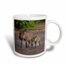 3dRose Warthog And Babies Chobe Safari Lodge Kasane Botswana Africa Ceramic Mug, 11 oz
