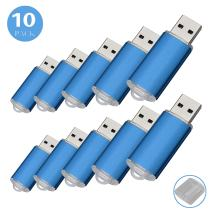 RAOYI 10Pack 2G 2GB USB Flash Drive USB 2.0 Memory Stick Thumb Drive Pen Drive Blue