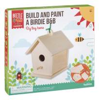Toysmith Beetle & Bee Build & Paint A Birdie B&B